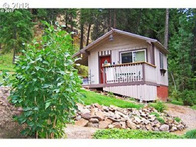 Single Family Home For Sale: River Canyon Rd