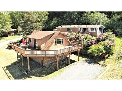 Brookings Single Family Home For Sale: 99396 Braynard Ln