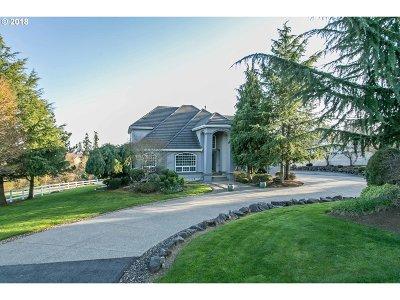Single Family Home For Sale: 14930 SE Monner Rd