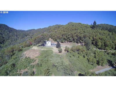 Myrtle Creek Single Family Home For Sale: 365 Boomer Hill Road