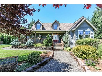 Washougal Single Family Home For Sale: 122 James Shepard Rd