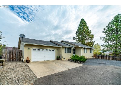 Roseburg Single Family Home For Sale: 389 Rolling Hills Rd