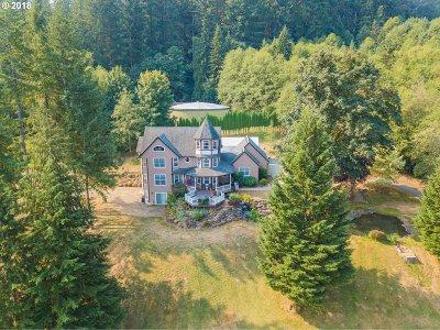 Yacolt Single Family Home For Sale: 24810 NE Humphrey St