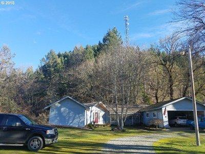 Douglas County Single Family Home For Sale: 407 Brady Hill Ln