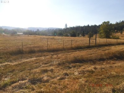 Roseburg Residential Lots & Land For Sale: 479 Orchard Ln