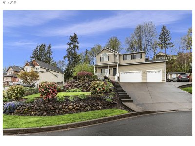 Washougal Single Family Home For Sale: 3771 Z St