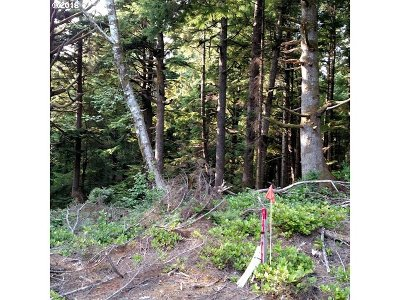 Arch Cape Residential Lots & Land For Sale: 3rd St #3102