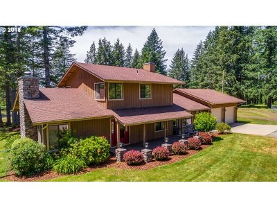 Washougal Single Family Home For Sale: 34230 SE 20th St