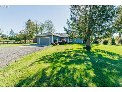 Washougal Single Family Home For Sale: 40208 NE Skye View Dr