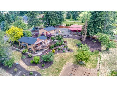 Hillsboro, Cornelius, Forest Grove Single Family Home For Sale: 52240 NW Outback Ln