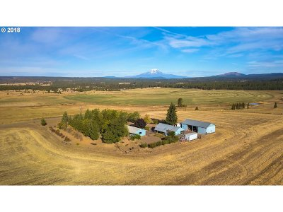 Goldendale Single Family Home For Sale: 20 N Harris Rd