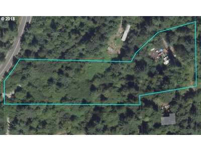 Battle Ground Residential Lots & Land For Sale: NE Schauer Dr