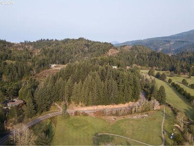 Gold Beach Residential Lots & Land For Sale: 1001 Cedar Valley