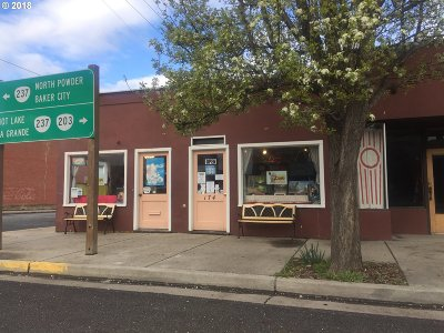 Commercial For Sale: 174 S Main St