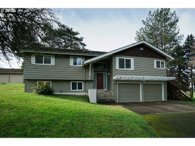 Salem Single Family Home For Sale: 157 Sanrodee Dr