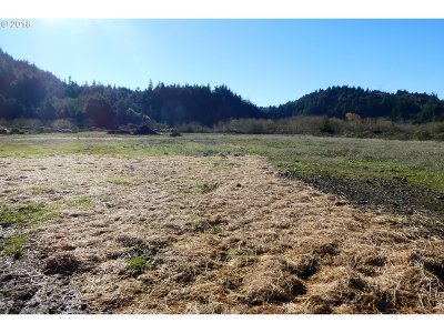 Gold Beach Residential Lots & Land For Sale: Euchre Creek Rd #400