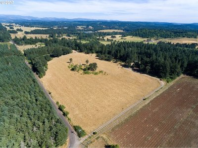 Molalla Residential Lots & Land For Sale: 13333 S Herman Rd