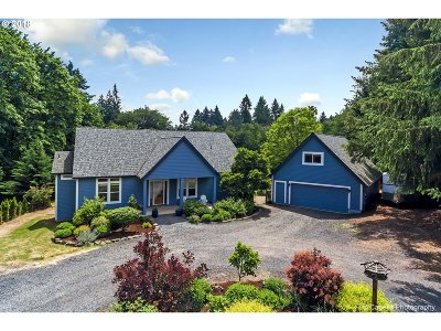 Portland Single Family Home For Sale: 19102 NW Logie Trail Rd