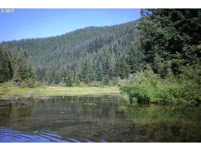 Estacada Residential Lots & Land For Sale: Nat Forest 4610 Rd