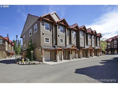 Government Camp Condo/Townhouse For Sale: 87907 E Alpenglow Ln #N 69
