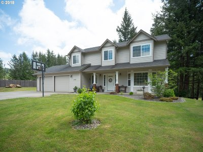 Battle Ground Single Family Home For Sale: 24341 NE Berry Rd