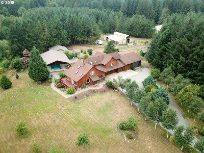 Amboy Single Family Home For Sale: 21101 NE Cedar Creek Rd