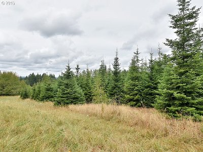 Estacada Residential Lots & Land For Sale: SE Duus Rd