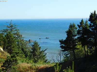 Port Orford Residential Lots & Land For Sale: Hwy 101