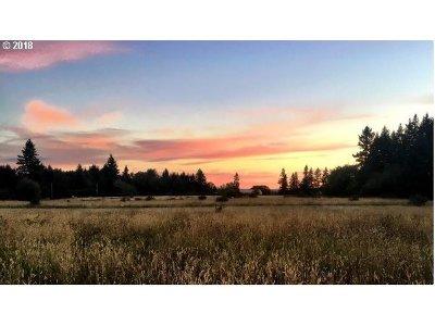Oregon City, Beavercreek, Molalla, Mulino Farm & Ranch For Sale: 02909 S Carus Rd