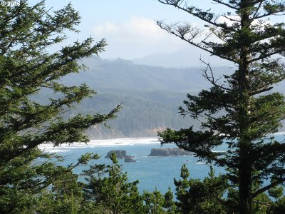Port Orford Residential Lots & Land For Sale: Boot Hill #7