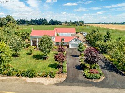Salem Single Family Home For Sale: 6847 Rochester St NE