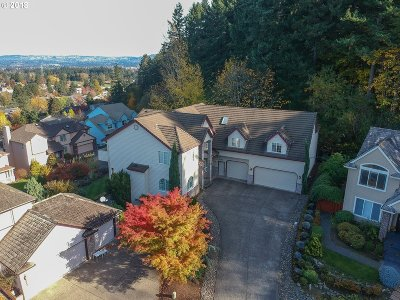 Single Family Home For Sale: 6350 SW 166th Pl
