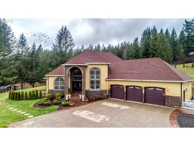 Washougal Single Family Home For Sale: 1108 NE 394th Ave
