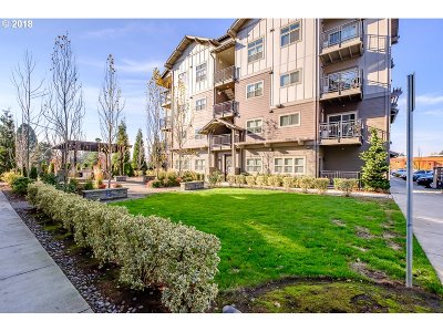 Beaverton Condo/Townhouse For Sale: 13895 SW Meridian St #213