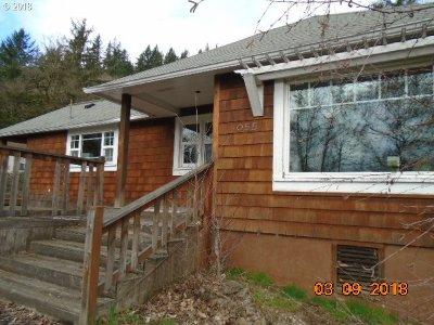 Camas Single Family Home For Sale: 1055 NW Elm St