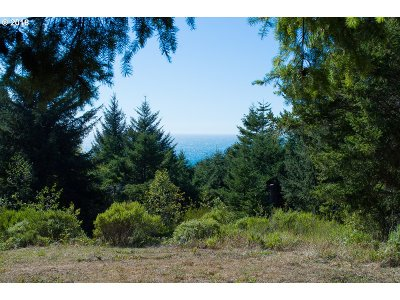 Ophir Residential Lots & Land For Sale: Mutts Way