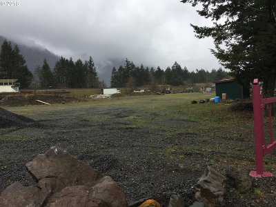 Skamania County, Clark County Residential Lots & Land For Sale: 580 East Cascade Dr
