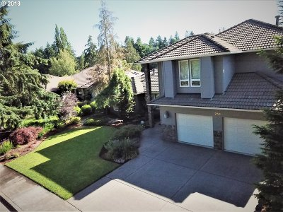 Keizer Single Family Home For Sale: 250 N Snead Dr