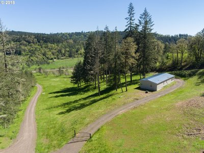 Yamhill Single Family Home For Sale: 22945 Highway 47
