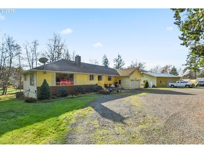 Battle Ground Single Family Home For Sale: 18605 NE Risto Rd