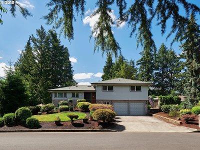 Hillsboro Single Family Home For Sale: 3672 SE Willow St