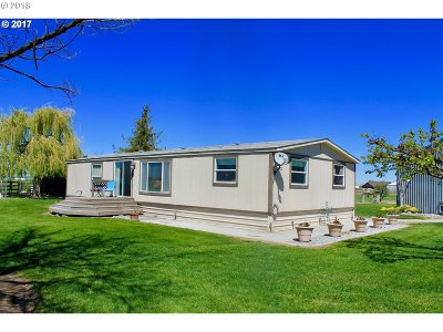 Umatilla County Single Family Home For Sale: 79555 Brown Ln