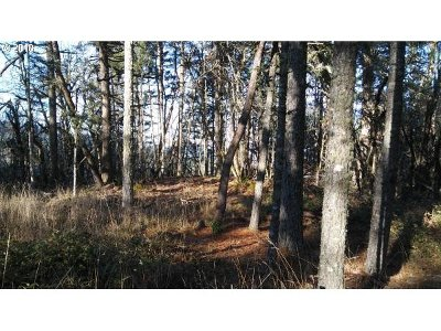 Lane County Residential Lots & Land For Sale: 32475 Fox Hollow Rd