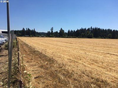 Estacada Residential Lots & Land For Sale: NW Park Ave
