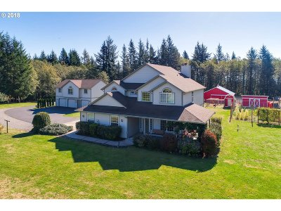 Washougal Single Family Home For Sale: 38011 SE Nichols Hill Rd