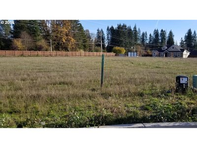 Battle Ground Residential Lots & Land For Sale: 2821 NE 9th Ave