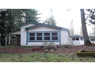 Single Family Home For Sale: 18 SE Curtis Dr