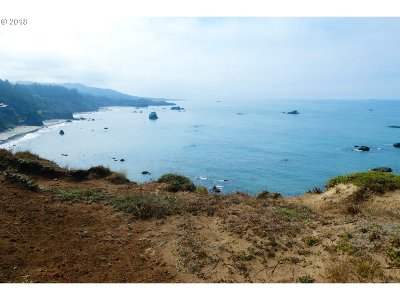Gold Beach OR Residential Lots & Land For Sale: $500,000