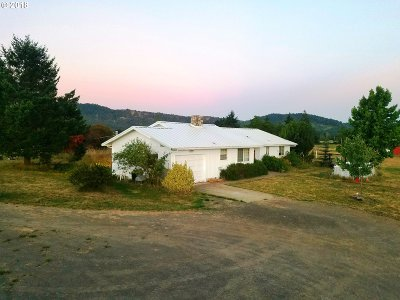 Roseburg Single Family Home For Sale: 603 Dairy Loop Rd