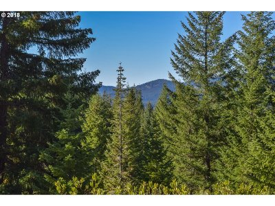 Sweet Home Residential Lots & Land For Sale: Highway 126 #301